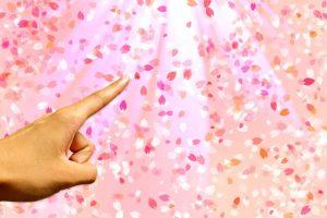 花びらと人差し指