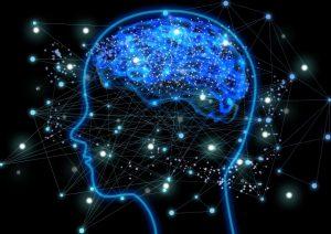 活性化する脳