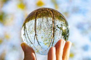 ガラス玉の中の自然